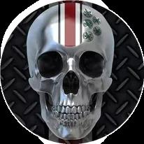 Ohio State University Skull