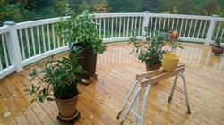 Rund terrasse