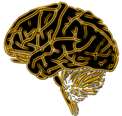 BlackGold_Brain5874b9.png