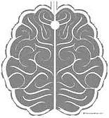 BrainLabyrinth_GreyMatter.jpg