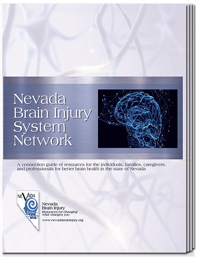 NBI_SystemNetwork_Cover.png