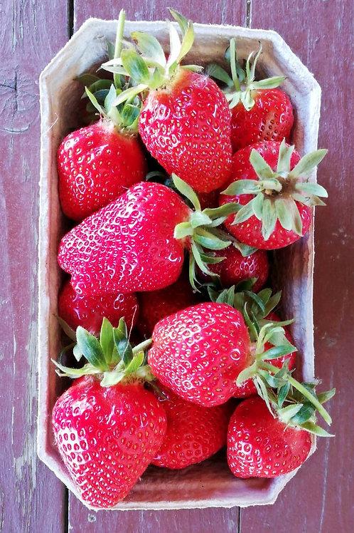 Erdbeeren 0,5 kg