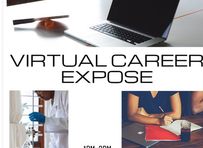Virtual Career Day Event