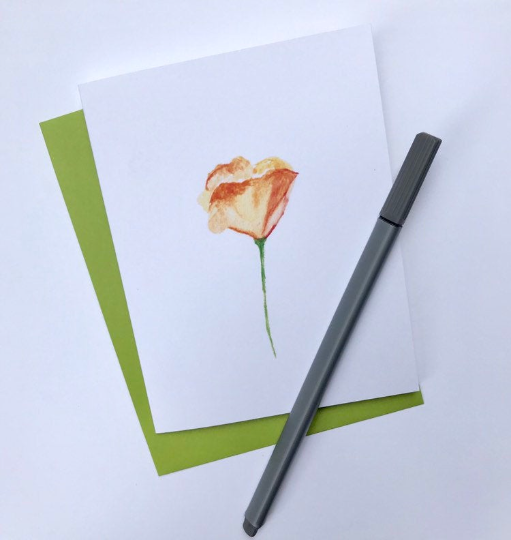 nature watercolor - poppy.png