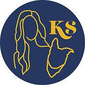 ksdt_social_blue_yellow.jpg