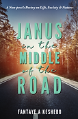 Janus in the Midde of the Road by Fantaye A. Keshebo