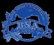 bsa_logo_blue.png