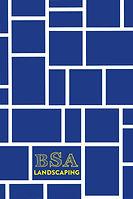 bsa_bc_back.jpg