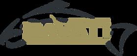 pavati-marine-brand-logo.png