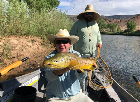 Green River Fly Fishing Report -July 29th, 2020