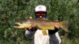 Opie, trout