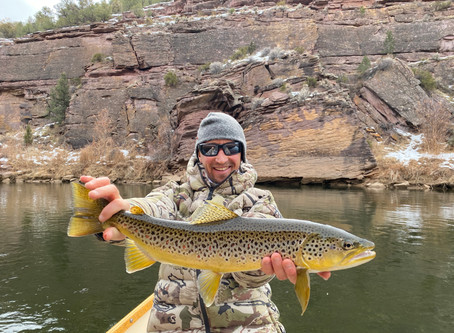 Green River Fly Fishing Report February 2nd, 2020