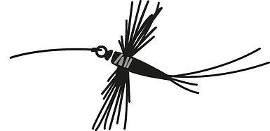 SF+Logo+Fly.jpg