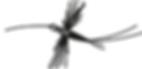 Spinner Fal Fly