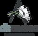 dbandrea logo