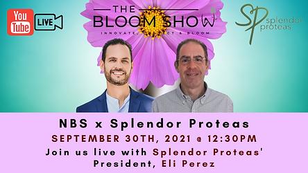 LI format - The Bloom Show  (2).png