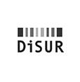 2.DISUR.png
