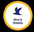 Bird_Wildlife_final.png