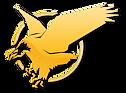 TeamEagle-Logo-Diamond.png