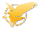 TeamEagle-Logo-Diamond.png