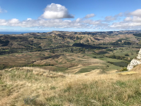 TE MATA PEAK, HAVELOCK NORTH, NEW Z EALAND