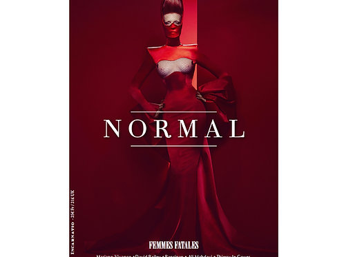Normal Magazine issue 11 - Online