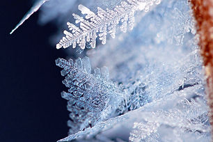 Snow and Frost Gallery