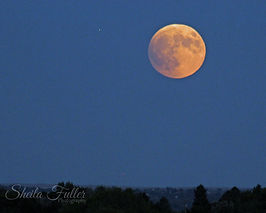 Blood Moon, Full Moon, Colorado Springs, Colorado