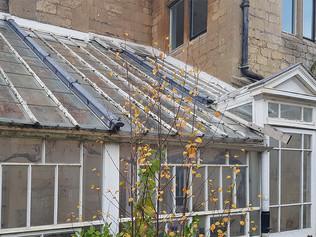 Victorian Orangery Renovation