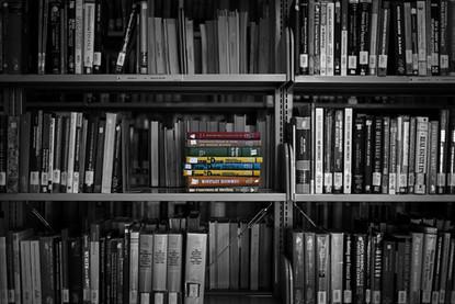 the books.jpg
