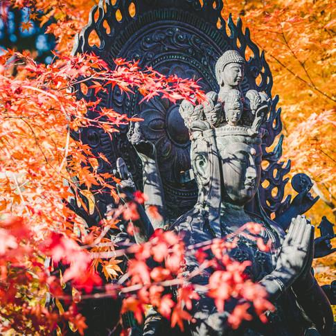能登町平等寺の紅葉