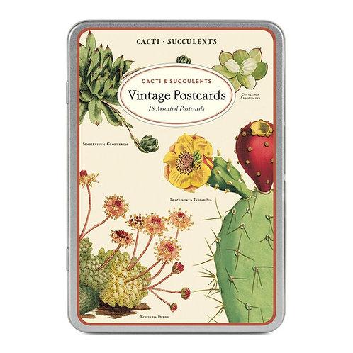 מארז גלויות בקופסת פח Succulents