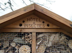 Hotel+à+insectes+Noyal+Muzillac+-+grand+public+(13).JPG