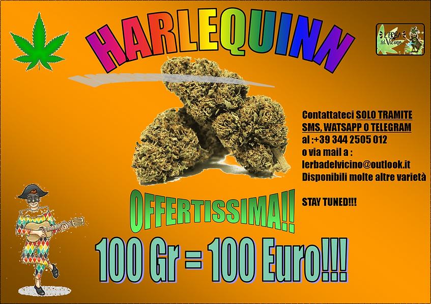 HQ 100 GR 100 EURO.png
