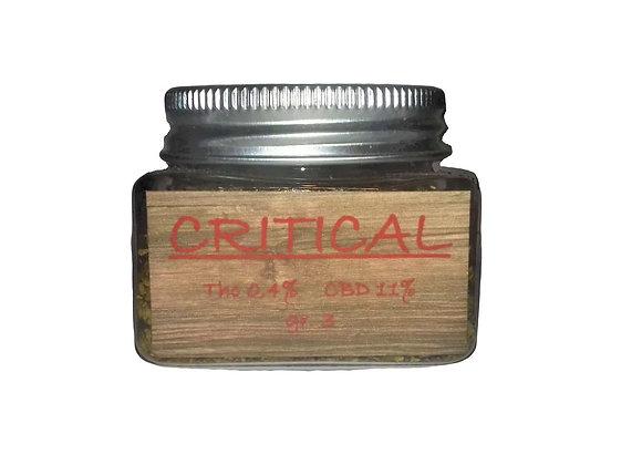 CRITICAL gr 3