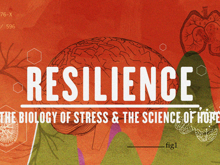 RESCHEDULED: Resilience screening at MPE