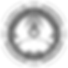 logo_alianca_sombra_pretoebranco.png