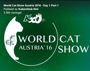 world show 2016.jpg