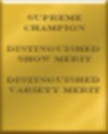 cooper plaque 3.jpg