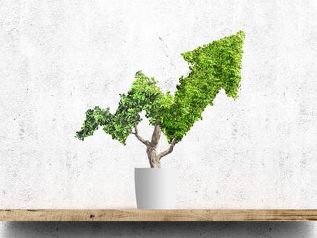 Bærekraft - kom i gang ved å øke kompetansen