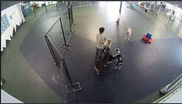 webcam B.JPG