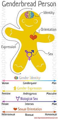 Genderbread-gender-identity-graphic.jpg