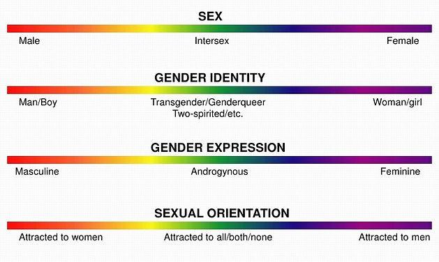 gender-chart_edited.jpg