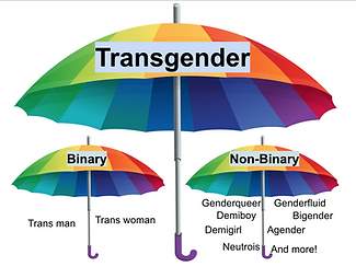 trans umbrella.png