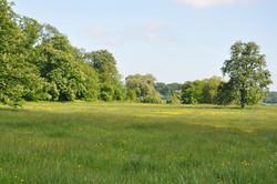 Waddesdon Estate