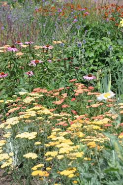 Eastcote House Walled Garden