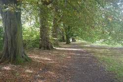 Marble Hill Park