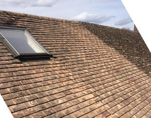 Roof Cleaning & Repair