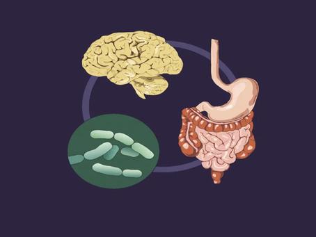 Beynimizde Yaşayan Yararlı Bakteriler Olabilir Mi?