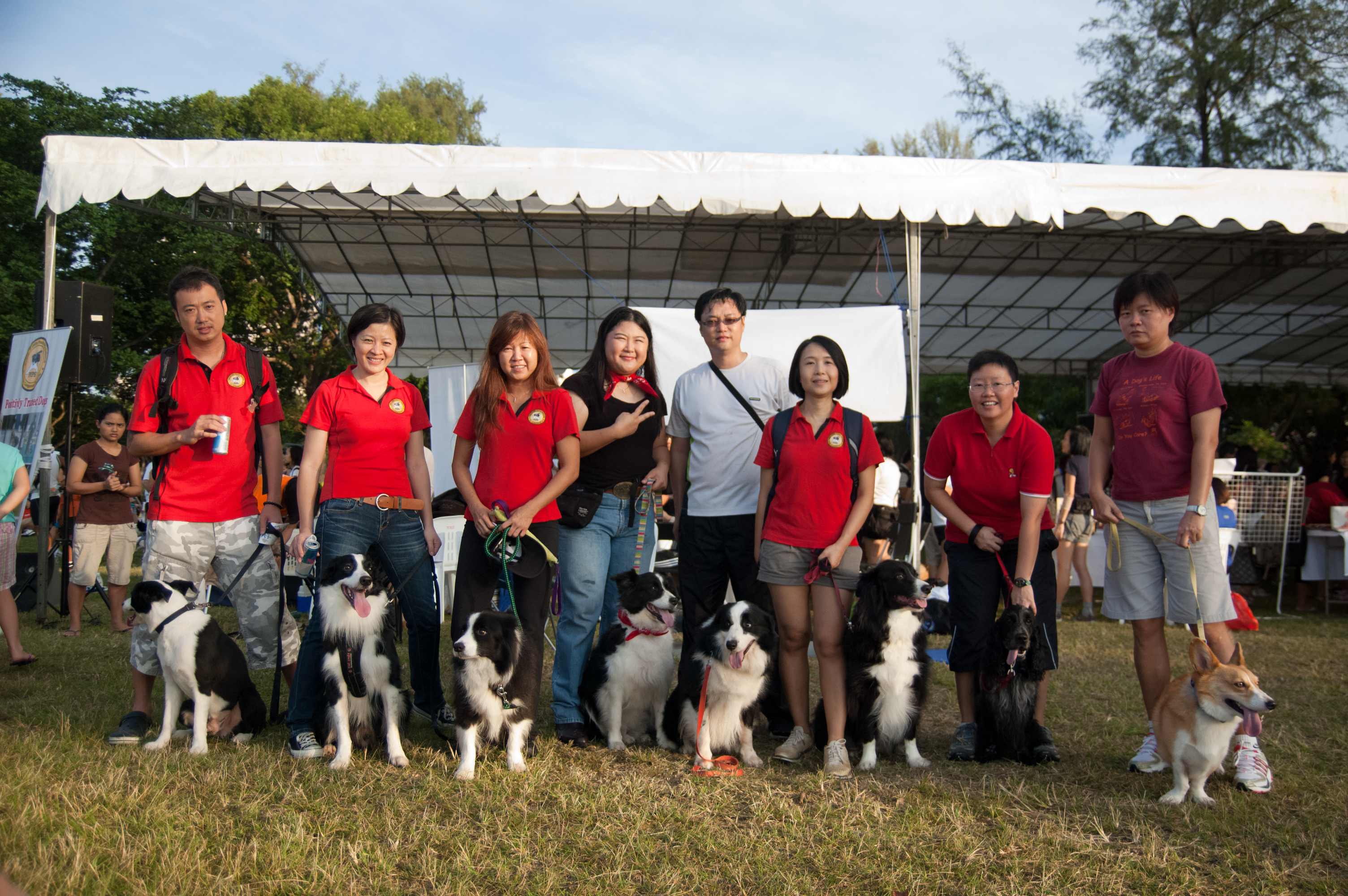 Rusti Run flyball team